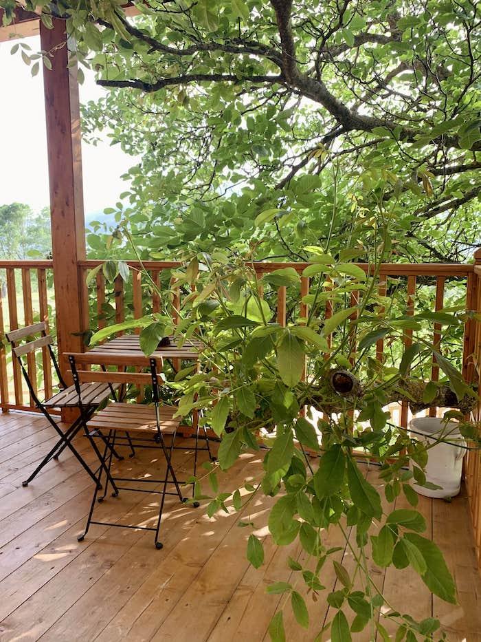 veranda casa sull'albero